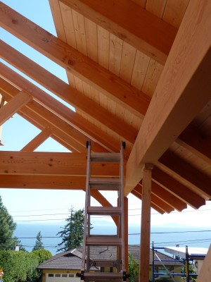 Flat Roof Framing