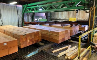 Visit to Tamlin's Timber Mill